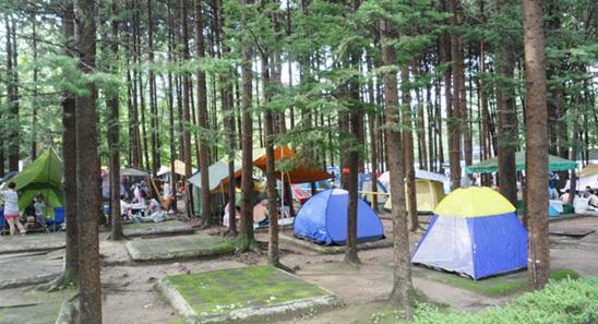 Imchaemu Amusement Garden Duri Land, el jardín de atracciones de Jangheung lleno de recuerdos.