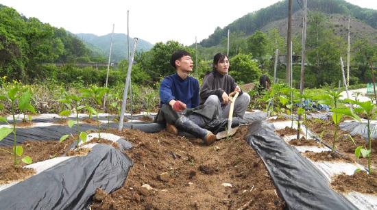 [Human Theater] New-age couple Farming Diary!