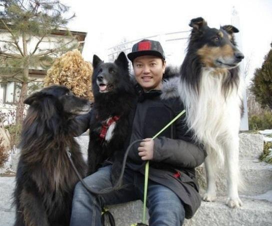 What kind of dog is Kim Min-kyo's companion dog and Belgian Sheepdog?